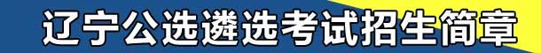 2017年辽宁公选遴选考试招生简章